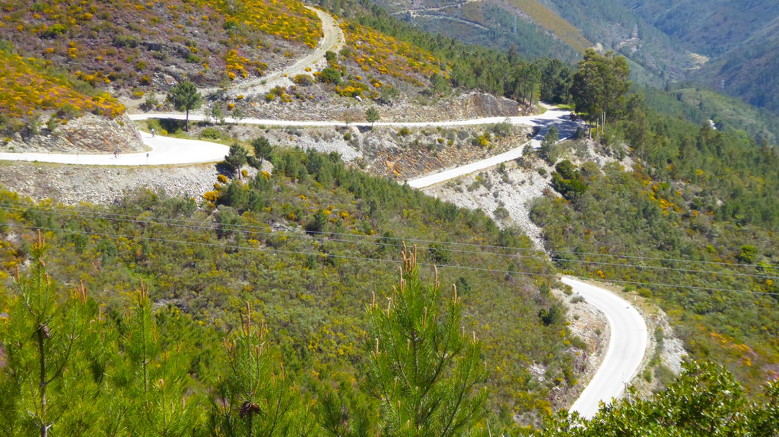 Private cycling trip opportunity: One of the Trans-Portugal climbs