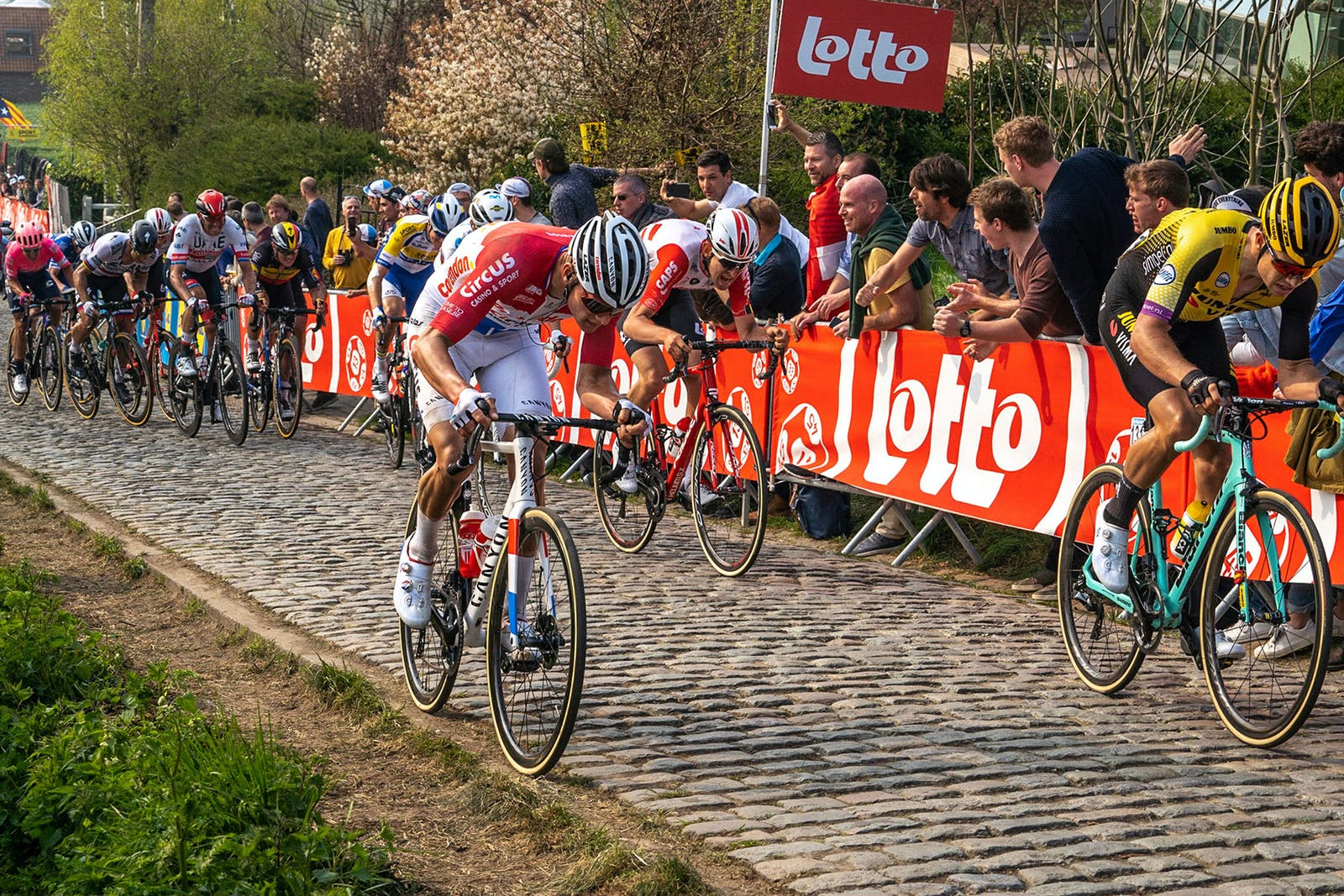 Mathieu van der Poel battles the cobbles